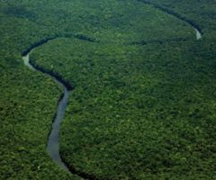 Aerial view of the Potaro river on the way to Kaieteur Falls. Photograph by Terry Kuet