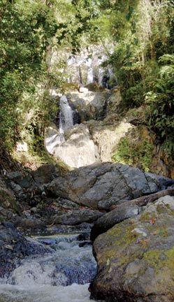Argyle Falls. Photograph by Desiree Seebaran