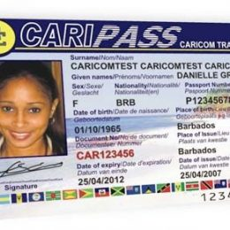 The Need for Speed: Caripass
