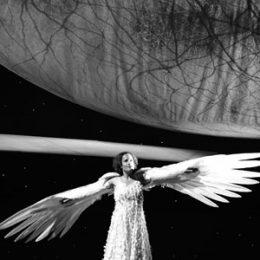 Taking flight: Bird of Night