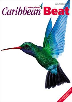 Illustration courtesy Caribbean Airlines