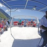 Rolling in the deep: whale-watching in Dominica