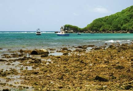 Shoreline degradation at Consett Bay, St John, a small fishing village on the east coast of Barbados. Photograph by Adrian Griffith