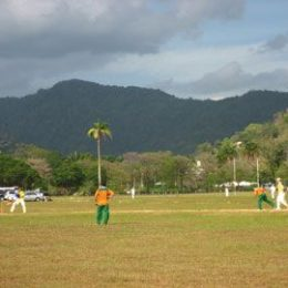 The heat of battle. Palm Tree Cricket Ground, Queen`s Park Savannah, Port of Spain, Trinidad. Photograph by James Fuller