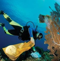 Castro Perez cleans one of Aruba`s reefs. Photograph courtesy Aruba Reef Care Project/Castro Perez