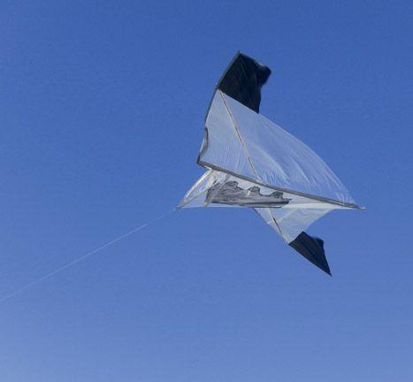 Flying high in Jamaica. Photograph courtesy Jamaica Kite Festival