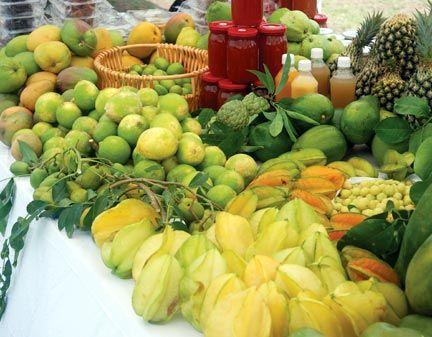 Feast on fruit. Photograph courtesy Eric Evelyn