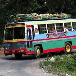 Reggae on wheels