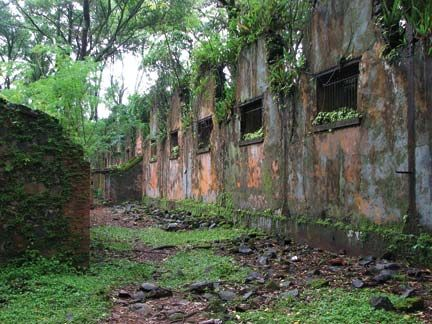 The overgrown ruins of the solitary confinement cells on Ile St Joseph. Photograph by Nicholas Laughlin