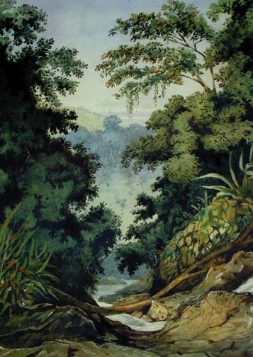 St Ann's Valley. Photograph courtesy National Museum and Art Gallery of Trinidad and Tobago