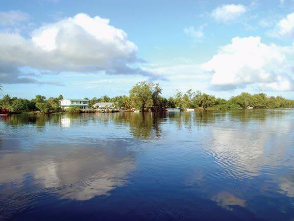 The Pomeroon River, a tributary of the Essequibo. Photograph by Desiree McEachrane