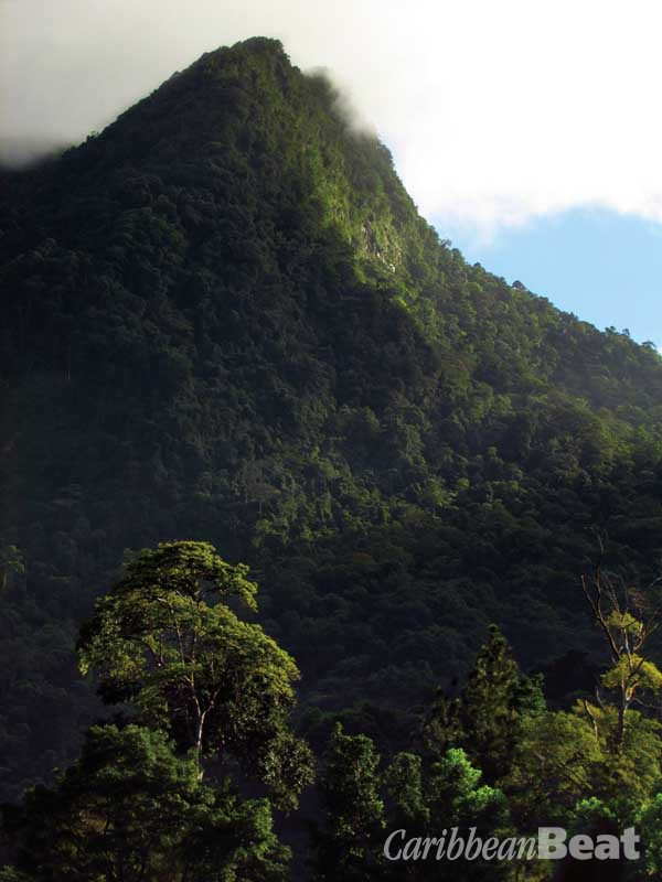 El Cerro del Aripo may be Trinidad's highest point, but for hikers El Tucuche — with its distinctive vertical profile, the adrenaline-inspiring Devil's Staircase, and summit views across both the north coast and the central plains — is the real prize. Photograph by Edison Boodoosingh