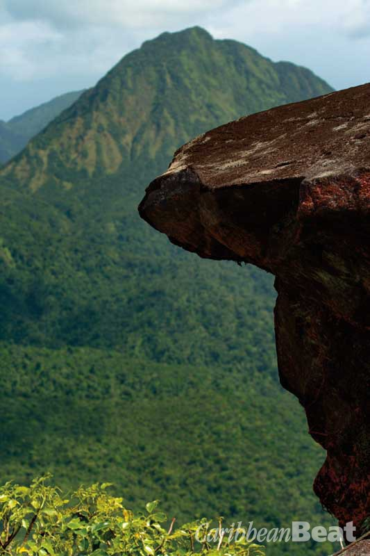 Famously — if apocryphally — a certain Genoese explorer described Dominica to a certain Spanish queen by crumpling a piece of paper, to demonstrate its mountainous topography. The challenging trail up Morne Micotrin gives extraordinary views of nearby peaks, like Morne Watt. Photograph by Celia Sorhaindo