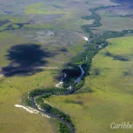 The Rupununi is a landscape of rolling savanna crossed by rivers. Photograph by Burton Lim