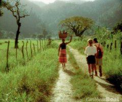 Photograph courtesy the Jamaica Tourist Board