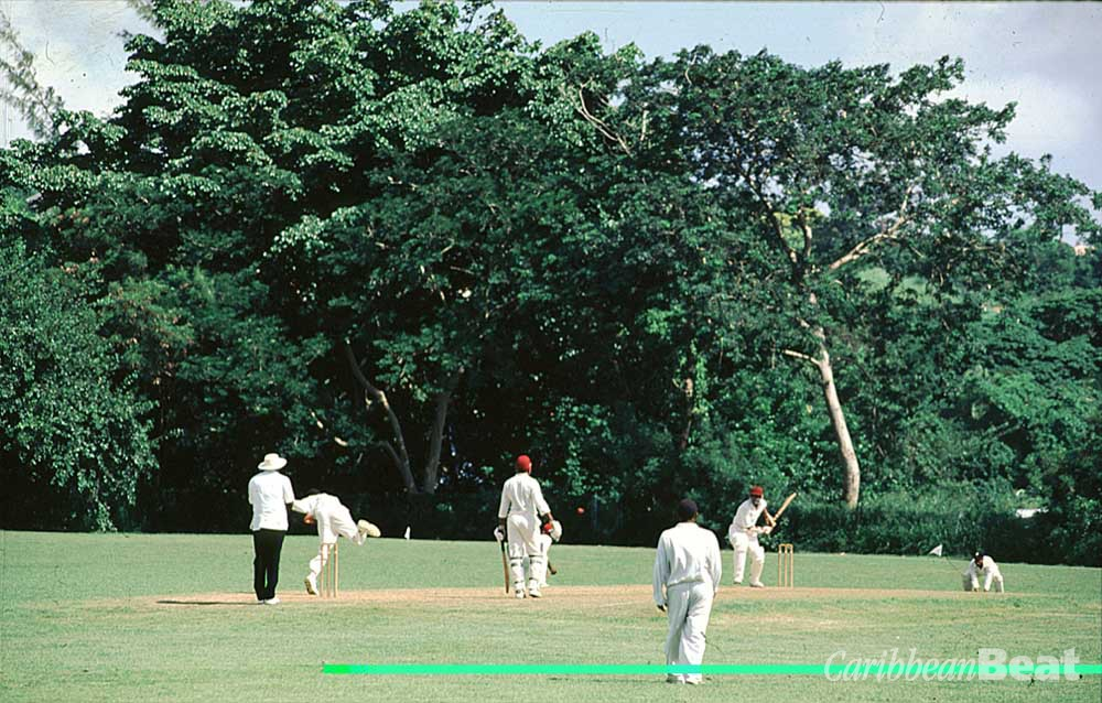 It's hard to spend much time in Barbados without stumbling on a cricket match in full swing. Photograph by Mike Toy