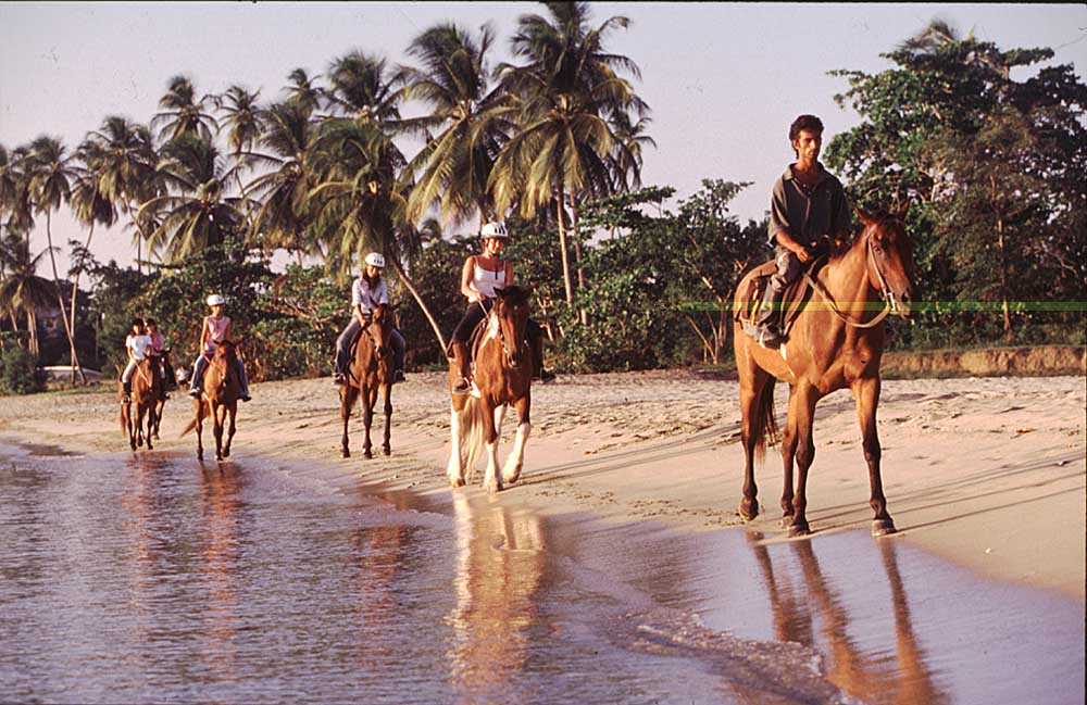 Horseback riding on the beach. Photograph by Roberta Parkin