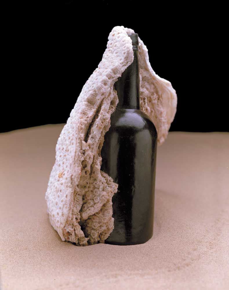 """Bottles aren't often found just lying on the ocean floor — divers need sharp eyes and a instinct for discovery. This early 1800s wine bottle was found by veteran diver """"Ram"""" Edghill when he noticed an odd coral formation. Thinking it might be a conch, because of its humped shape, he dove down to investigate and turned the """"conch"""" over to reveal the bottle embedded in the coral. Photograph by Eric Young"""