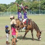 Wishes and horses: Tobago's Healing With Horses