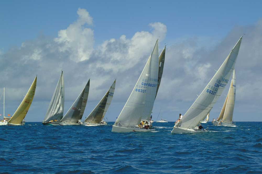 At the starting line. Photograph courtesy the Trinidad and Tobago Sailing Association/Tim Wright