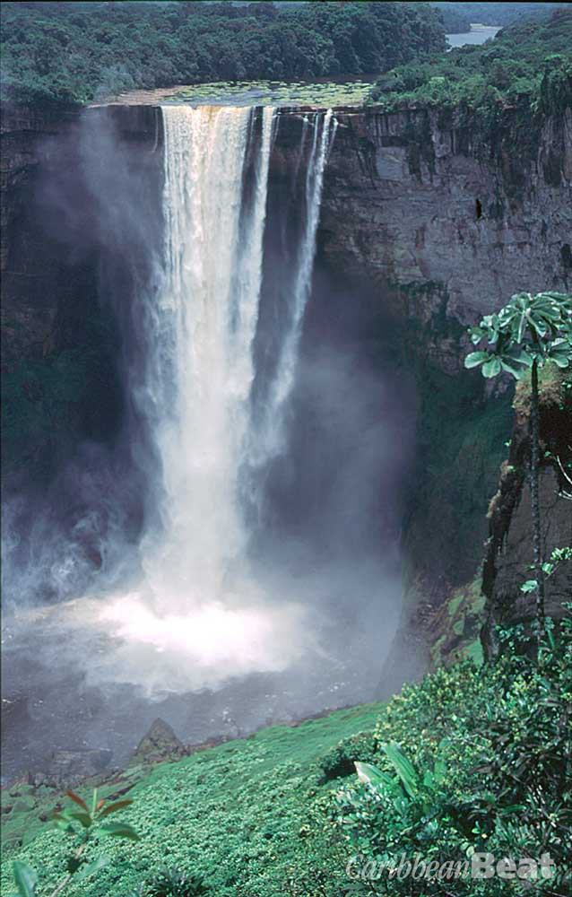 Majestic Kaieteur Falls, the largest single-drop waterfall in the world. Eric Young/Roxan Kinas