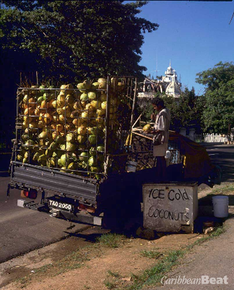 Coconuts on sale around the Savannah, Port of Spain. Photograph by Alwyn Sin Pang