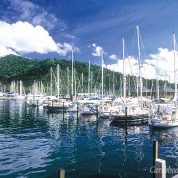 Chaguaramas is the largest yacht service centre in the Caribbean. Photograph courtesy CrewsInn