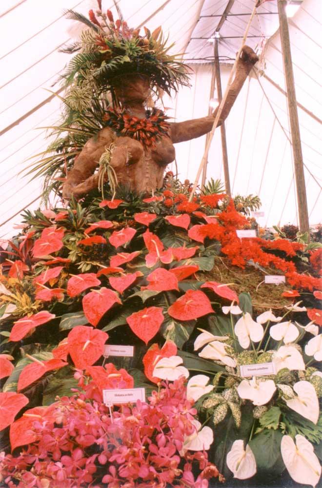 Exhibit from Trinidad. Photograph courtesy Trinidad and Tobago Horticultural Society