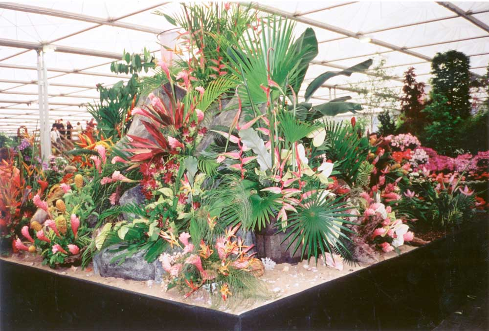 Grenada at Chelsea 2000 (Silver Gilt medal). Photograph courtesy Suzanne Haywood