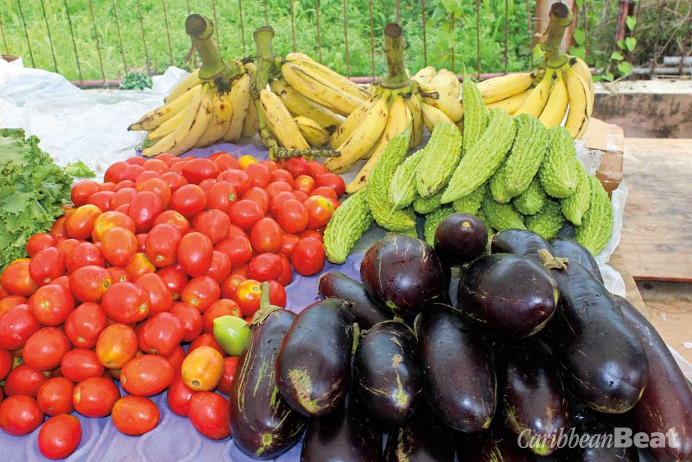 Produce for sale at the Mayaro market. Photograph by MEP publishers