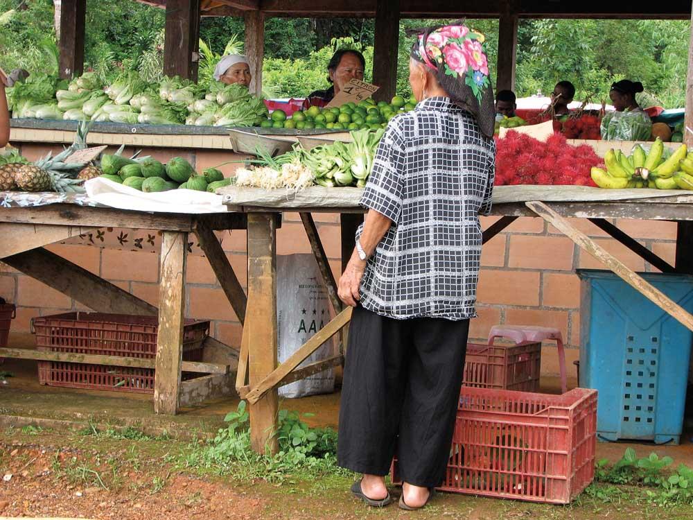 Hmong Market, Cacao, French Guiana. Photograph by Nicholas Laughlin