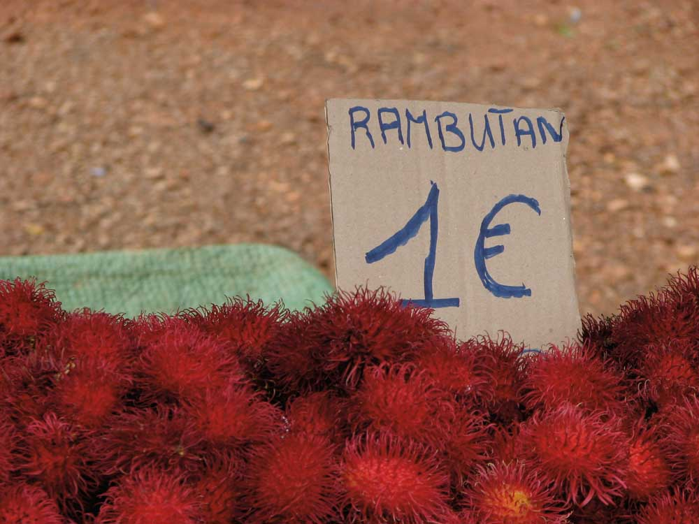 Rambutan fruit, introduced from South-east Asia and now grown in French Guiana, at the Hmong Market in Cacao. Photograph by Nicholas Laughlin