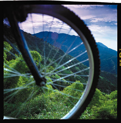 Bicycling through the Blue Mountains. Photograph courtesy the Jamaica Tourist Board