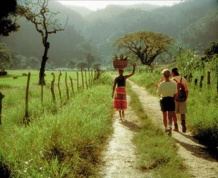 Photograph courtesy Jamaica Tourist Board