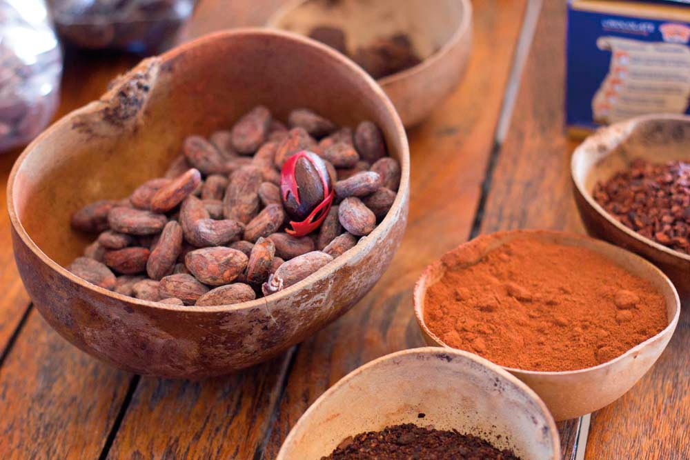 Photograph ourtesy Grenada Chocolate Festival