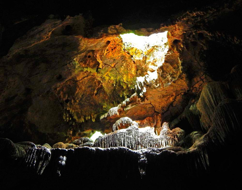 Gasparee Island's limestone topography includes a well-known cave system. Photograph by Marianne Hosein