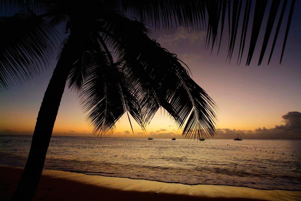 Photograph by Stephen R Smith – www.photodynamicsinc.com