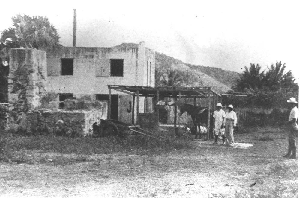 The author's grandfather, visiting a St John bay rum distillery in 1936. Photograph by George HH Knight, courtesy David Knight, Jr