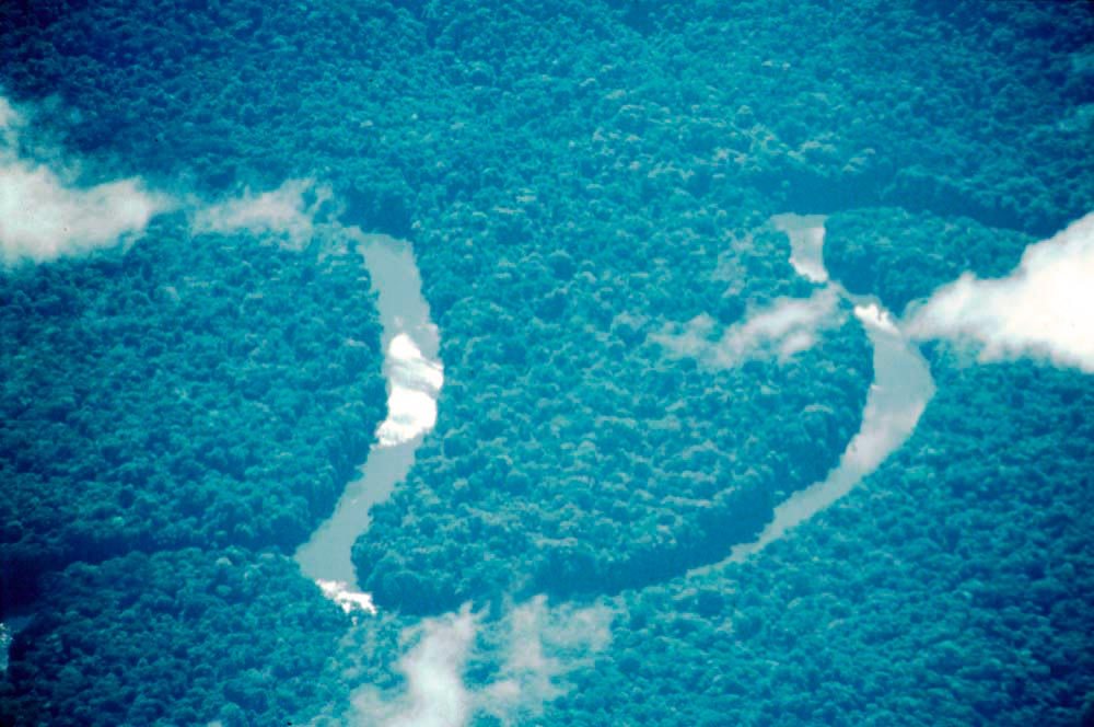 The Essequibo River winds through the Iwokrama forest. Photograph Katrin Egerer