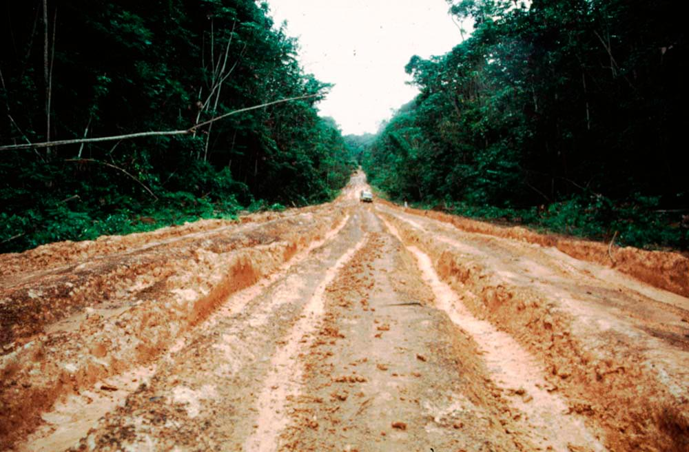 Road from Iwokrama to Surama. Photograph by Katrin Egerer