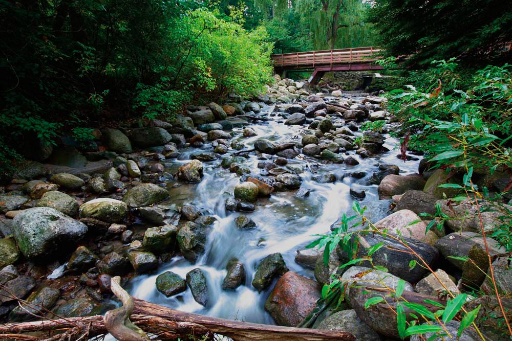 Patches of wilderness are within easy reach of Toronto's downtown. Photograph ©bukharova/iStock.com