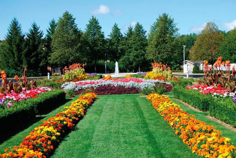 A park in the Brampton neighbourhood. Photograph courtesy Tourism Brampton