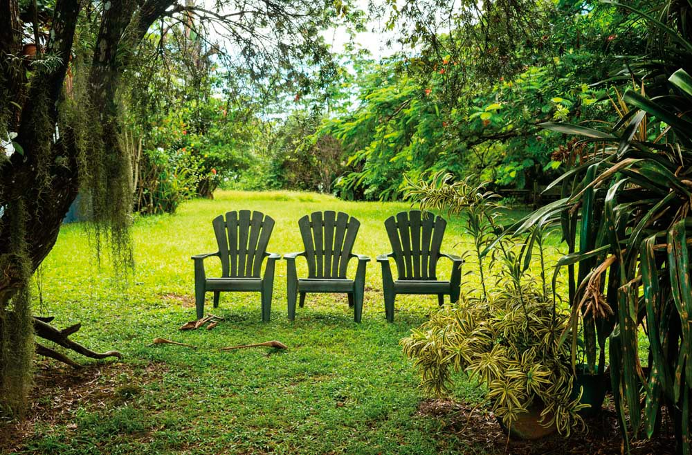 A place to pause and reflect on the beauty of Tobago. Photograph © Debralee Wiseberg/iStock.com