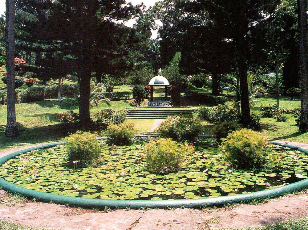 Kingstown Botanic Gardens. Photograph by Chris Huxley
