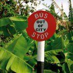 Bim by bus