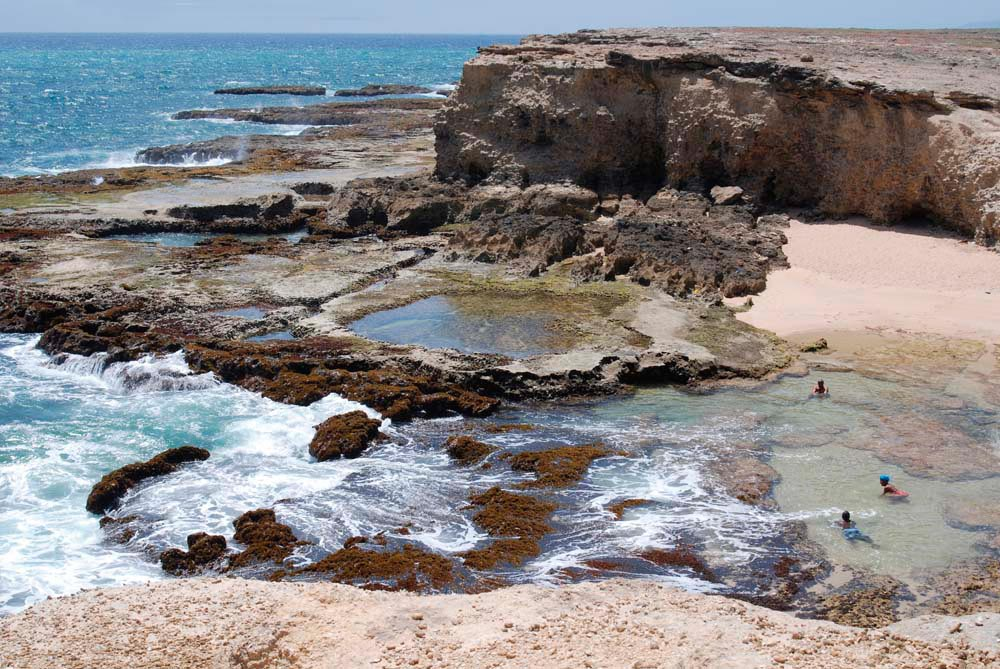 Though Barbados's northern tip is famous for its jagged scenery, its small bays conceal sheltered pools for swimming. Photograph by Barbados Tourism Authority