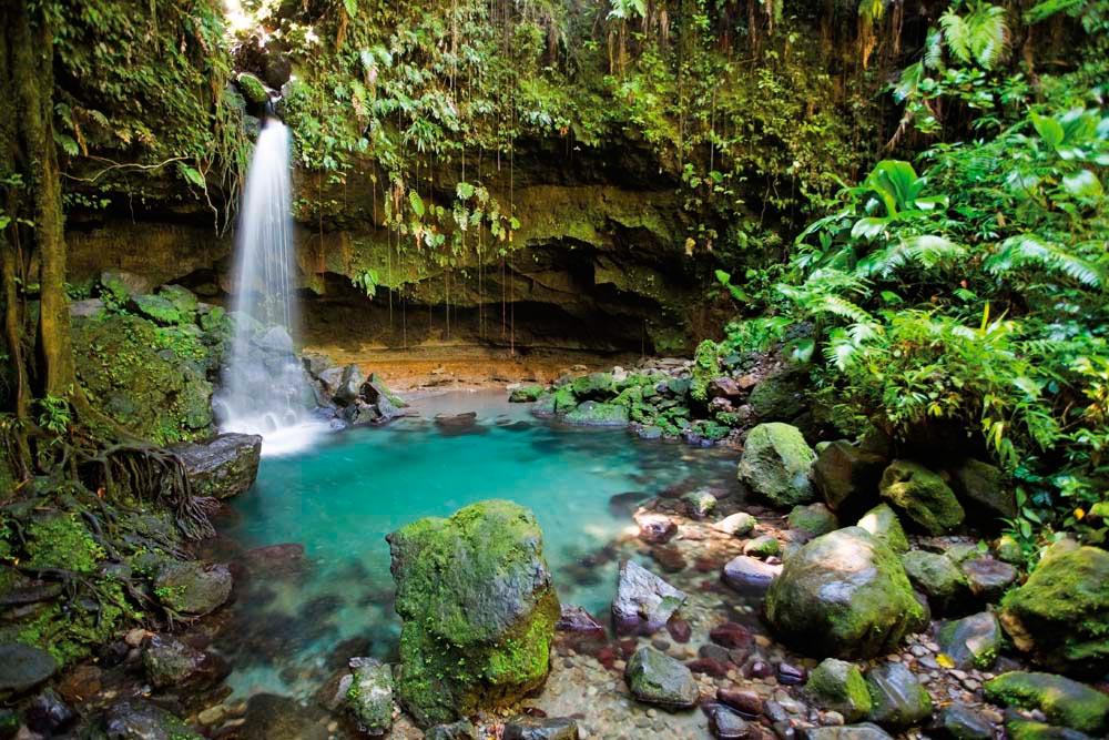 Emerald Pool. Photo by paulzizka/iStock.com