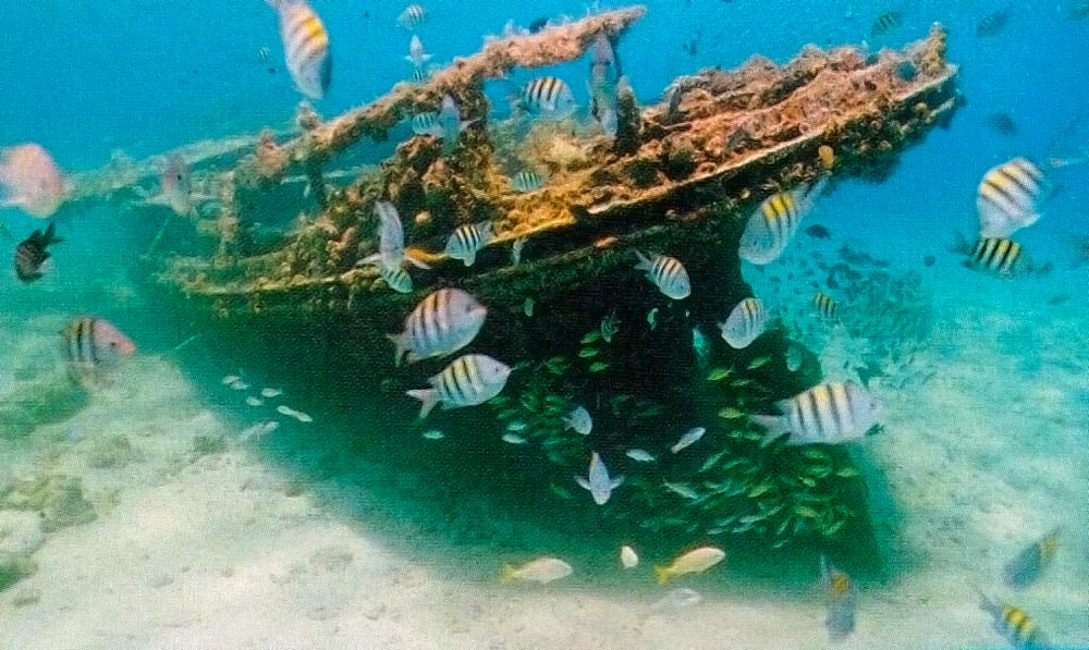 Wreck of the Berwyn, Carlisle Bay. Photograph by Mike Toy