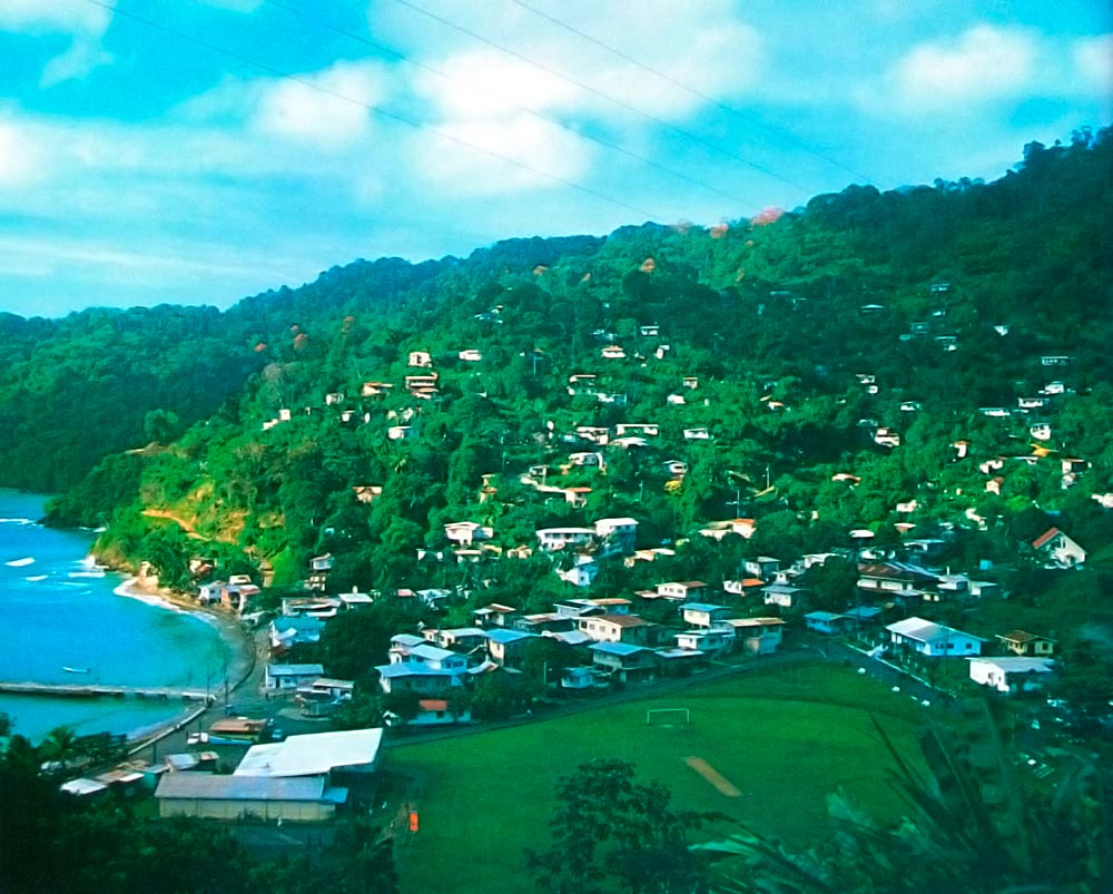 View of Charlotteville. Photograph by Sean Drakes/Blue Mango