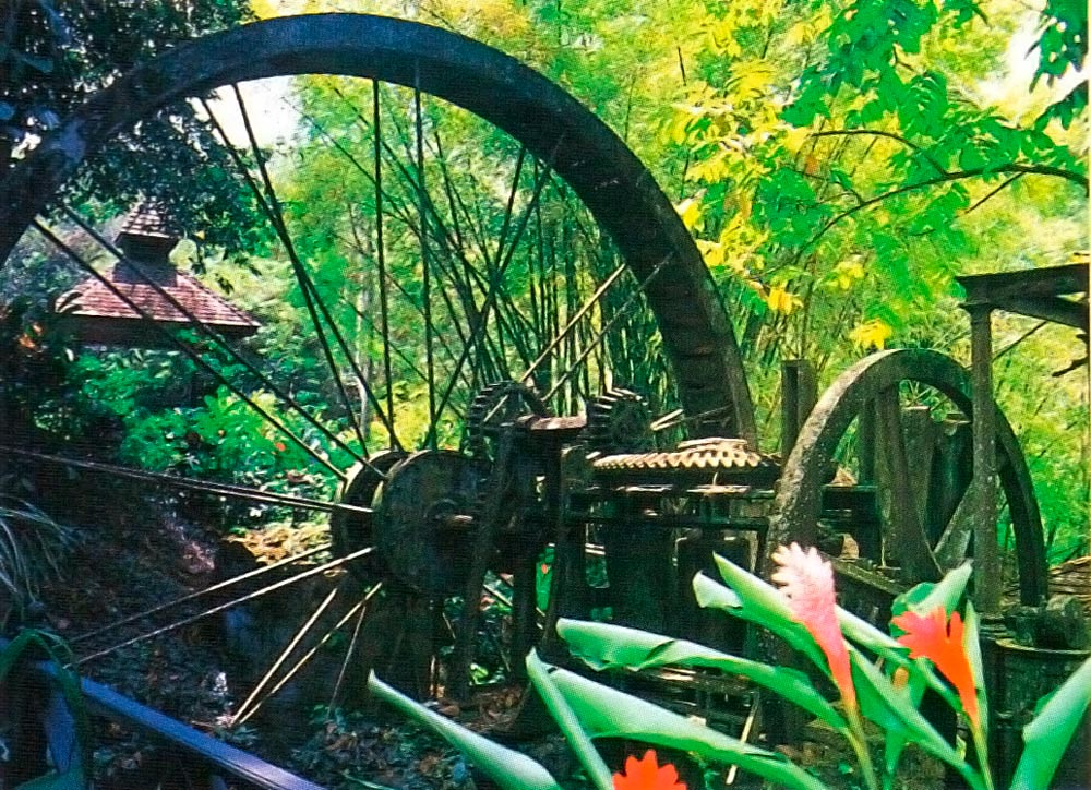 Old water wheel, a relic of plantation life. Photograph by J. Alleyne